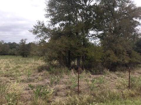 1420 County Road 233, Giddings, TX 78942 (MLS #18481241) :: Texas Home Shop Realty