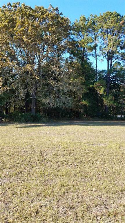 9 Drywood Lane, Trinity, TX 77340 (MLS #18701350) :: TEXdot Realtors, Inc.