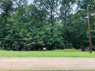 Lots 39 & 40 Knottypine, Livingston, TX 77351 (MLS #19022731) :: The SOLD by George Team