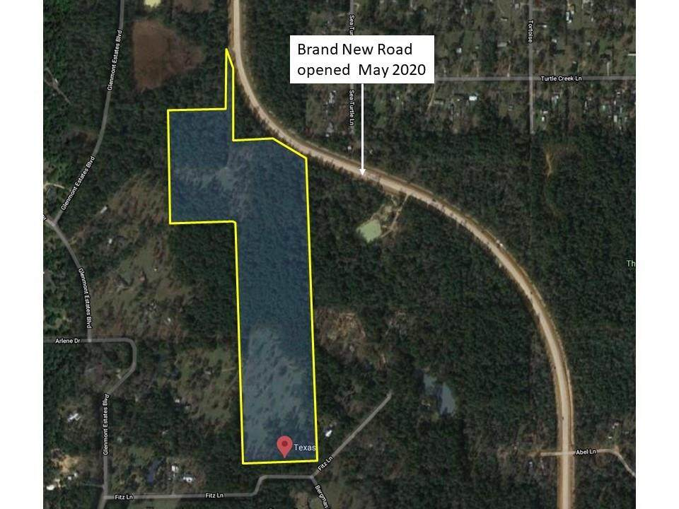 ±42 Acres Grand Pines Road - Photo 1