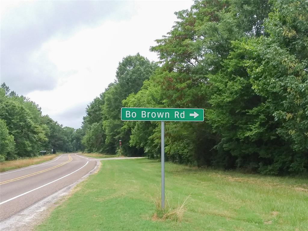 0 Bo Brown Road - Photo 1
