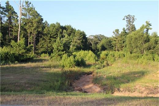 4538 N Duck Creek Road, Cleveland, TX 77328 (MLS #19386235) :: The SOLD by George Team