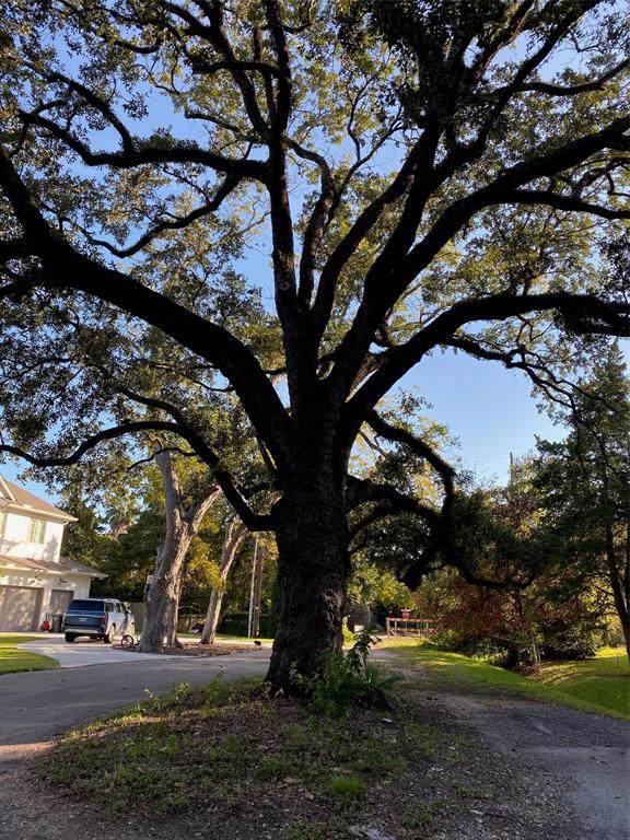 1213 Tamy Lane, Houston, TX 77055 (MLS #19434717) :: Phyllis Foster Real Estate