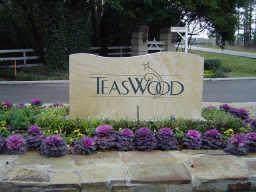 10277 Paradise Valley, Conroe, TX 77304 (MLS #19570944) :: Texas Home Shop Realty