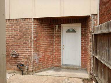 5317 Lost Forest Drive - Photo 1