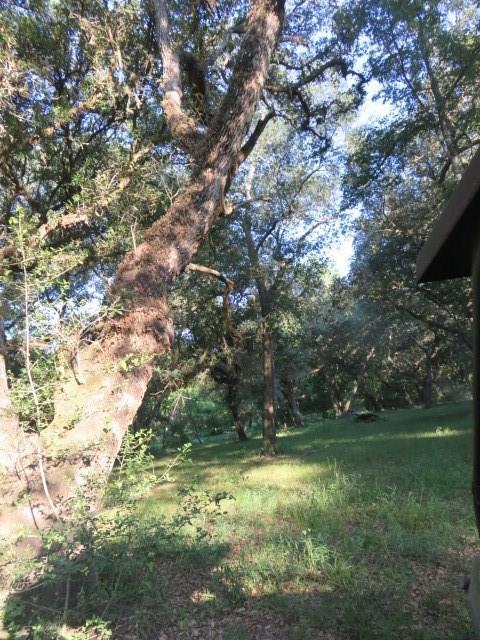 13470 County Road 394, El Campo, TX 77437 (MLS #20040554) :: The Property Guys