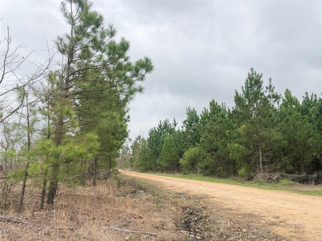00000 County Road 4429 - Photo 1