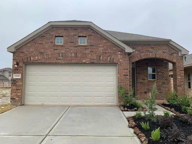 13126 Dancing Reed Drive, Texas City, TX 77510 (MLS #20522841) :: The Freund Group