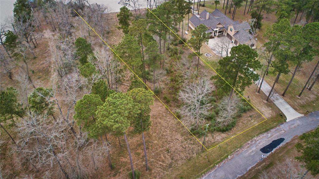 0 Pine Forest Acres - Photo 1