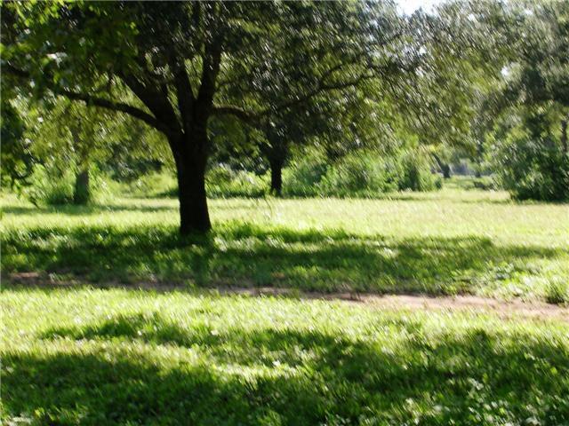 31119 Riverlake Road, Fulshear, TX 77441 (MLS #21168655) :: Magnolia Realty