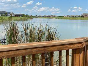 3618 S Shore Drive, Rosharon, TX 77583 (MLS #21593775) :: Area Pro Group Real Estate, LLC