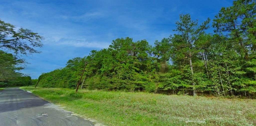 Lot 47 Cherokee - Photo 1