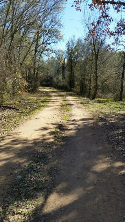 TBT SE Unimproved Road Road, Kerens, TX 75114 (MLS #21949382) :: The SOLD by George Team
