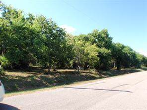 LOT 1 Duncan Drive, Oyster Creek, TX 77541 (MLS #22066824) :: Guevara Backman