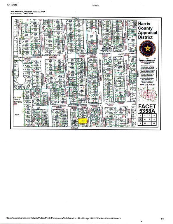 829 Herkimer Street, Houston, TX 77007 (MLS #22142491) :: Krueger Real Estate