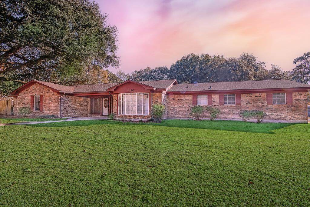 1107 Bluebonnet - Photo 1