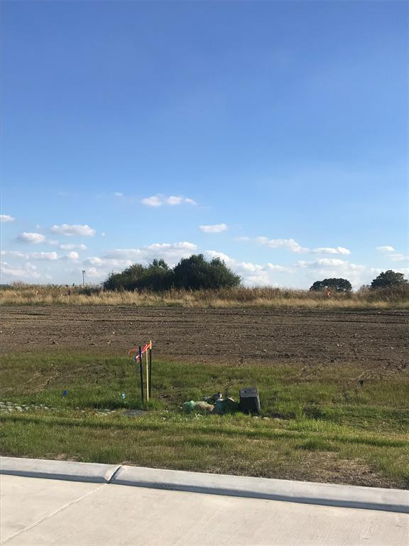 166 Abner Ln Lane, Montgomery, TX 77356 (MLS #23309235) :: Texas Home Shop Realty