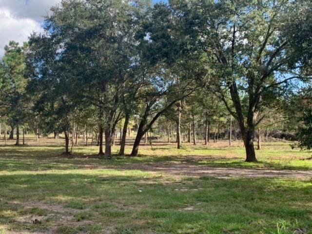 3536 County Road 136 Lot 10, Alvin, TX 77511 (MLS #2358718) :: The Bly Team