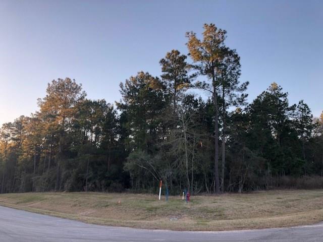11419 Kate Court, Montgomery, TX 77363 (MLS #23904921) :: Fairwater Westmont Real Estate