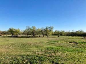 455 Jackson Street, Pleasanton, TX 78064 (MLS #23911029) :: Bray Real Estate Group