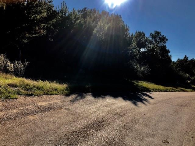 0 Thistle Down Road, Cypress, TX 77429 (MLS #23919181) :: The Parodi Team at Realty Associates