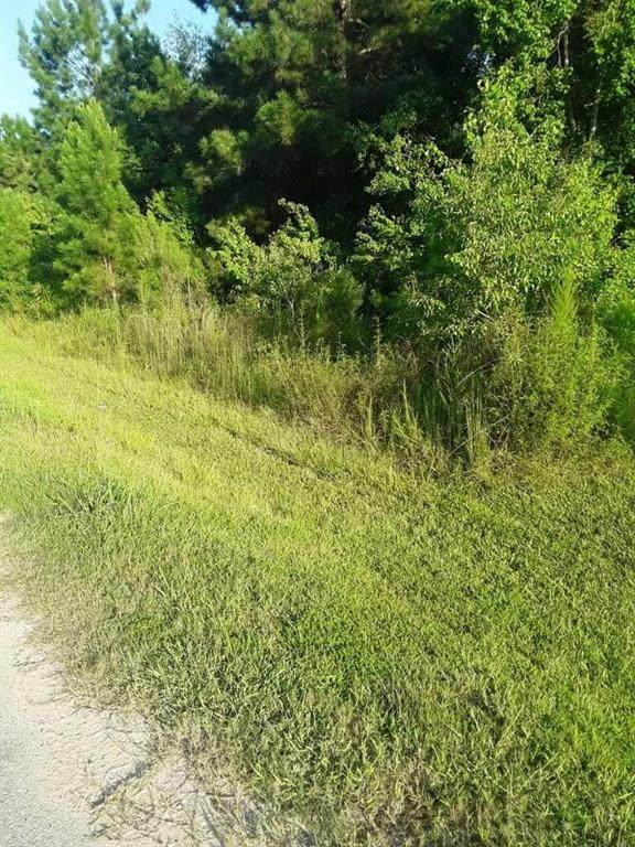 408 County Road 3414, Cleveland, TX 77327 (MLS #23935184) :: Green Residential