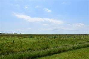 3802 Kiva, Galveston, TX 77554 (MLS #23970906) :: My BCS Home Real Estate Group