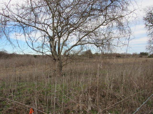 Lot 3 County Rd 249 - Photo 1