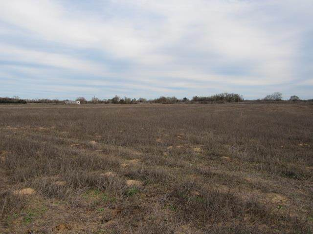 Lot 4 County Rd 249 - Photo 1