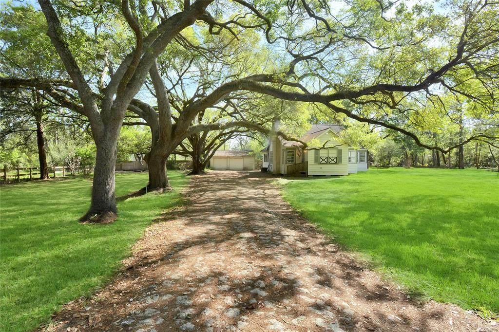 1717 Oleander Drive - Photo 1