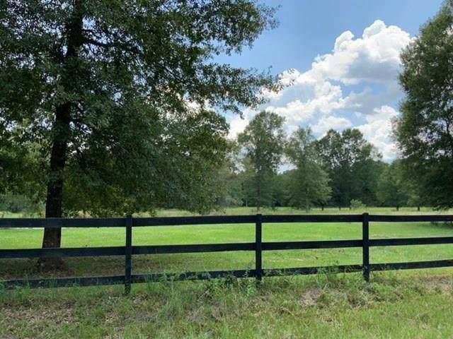 783 County Road 377, Cleveland, TX 77327 (MLS #24247705) :: Ellison Real Estate Team