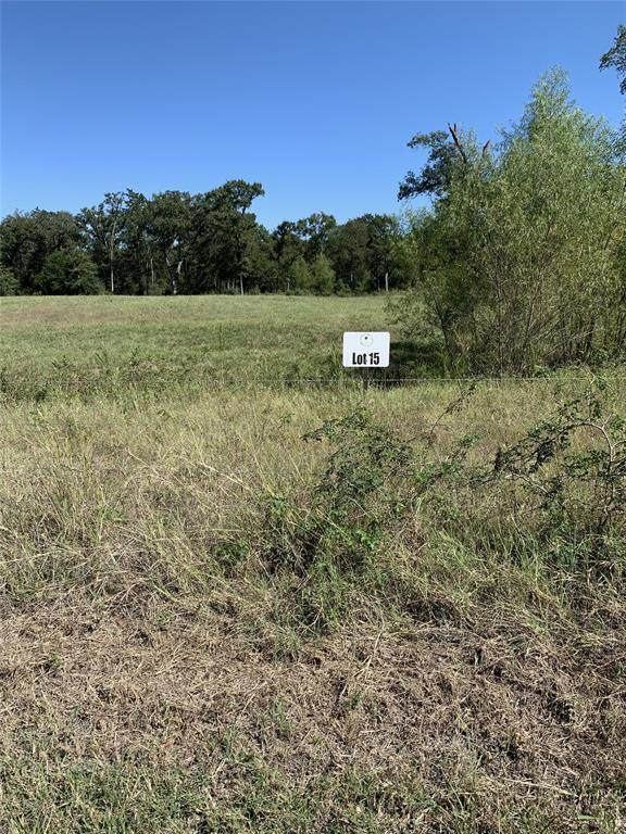 6278 Owensville Cemetery, Franklin, TX 77856 (#24718169) :: ORO Realty