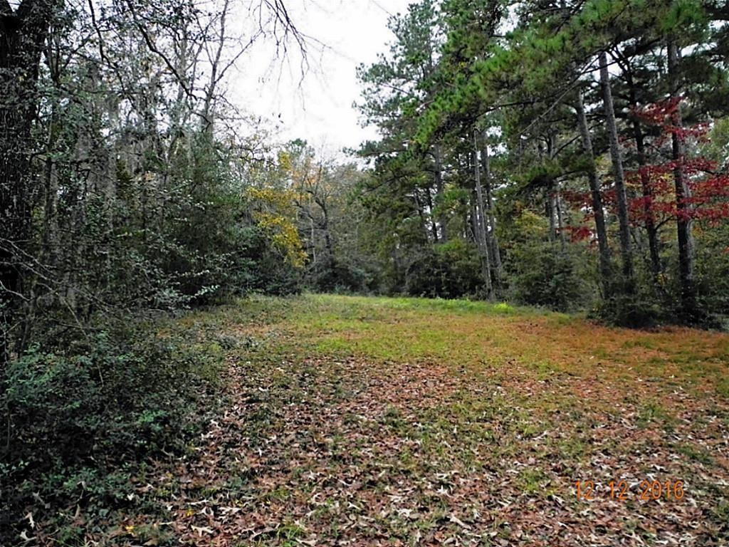 0000 Heritage Creek Lane - Photo 1