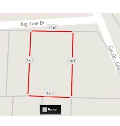 0 Big Tree Dr, Dayton Lakes, TX 77535 (MLS #2540075) :: Keller Williams Realty