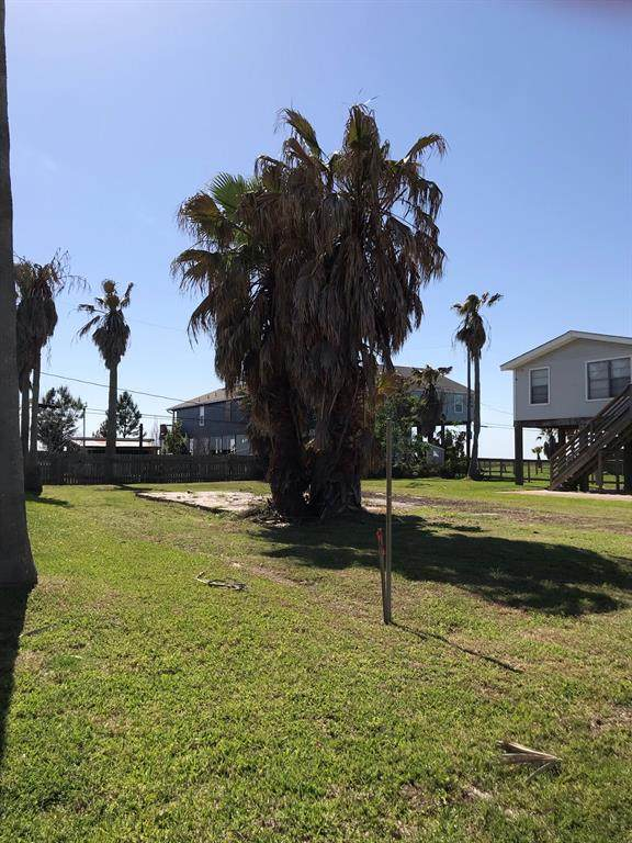 1501 103rd Street, Galveston, TX 77554 (MLS #2577811) :: The Parodi Team at Realty Associates