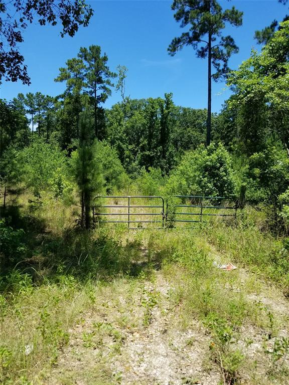 0 Spring Ridge Road, Coldspring, TX 77331 (MLS #25791049) :: The Heyl Group at Keller Williams