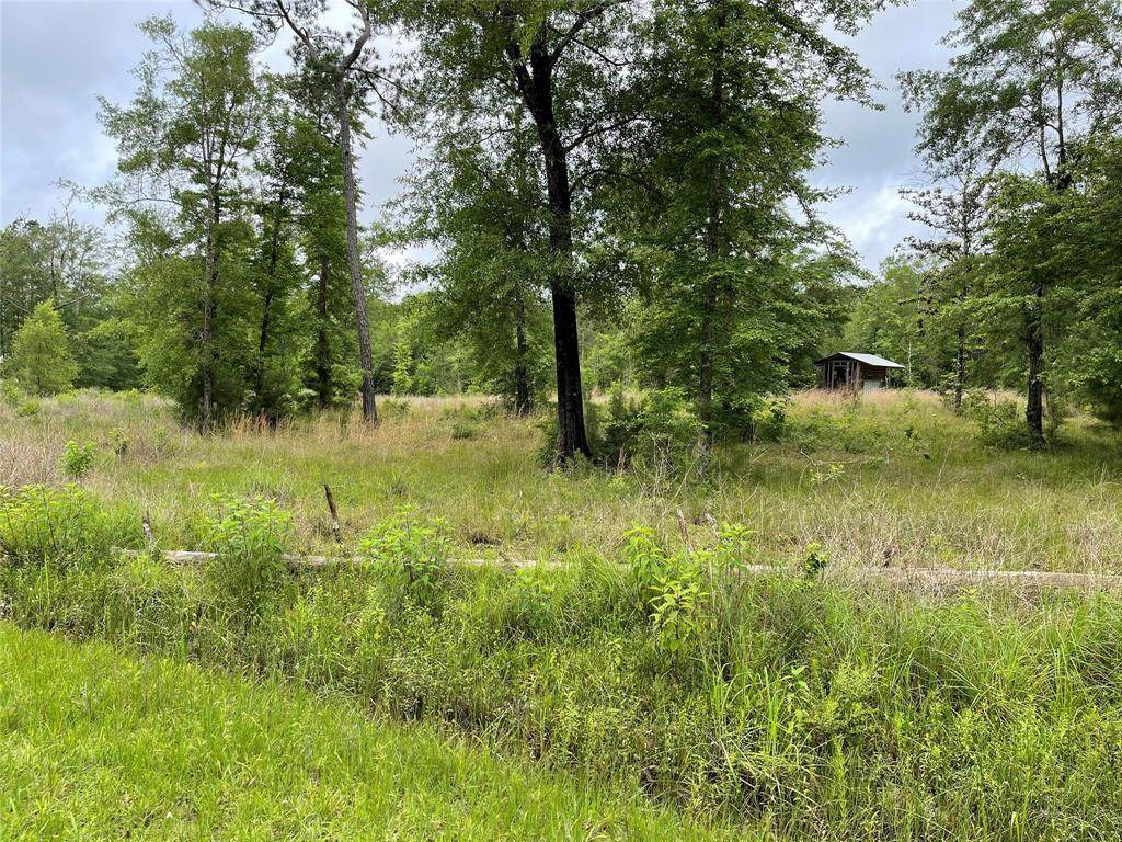 4554 Oil Field Loop Road - Photo 1