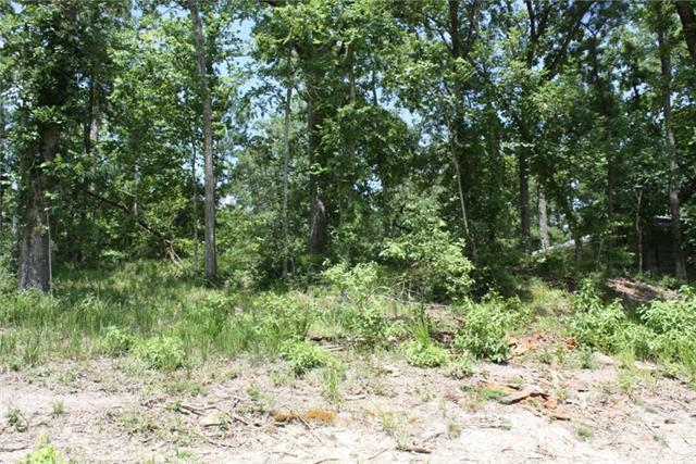 7 Pine Forest Acres Drive, Sebastopol, TX 75862 (MLS #26362041) :: Guevara Backman
