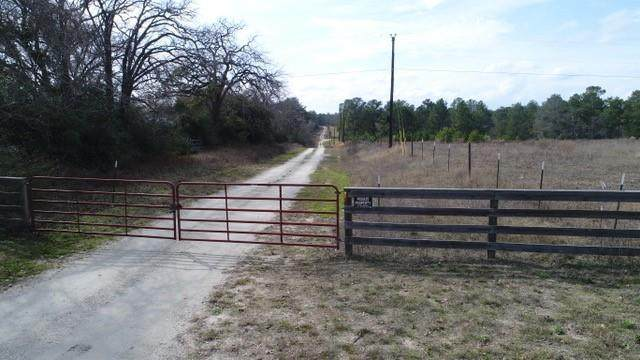 TBD Grimes County Road 417A - Photo 1