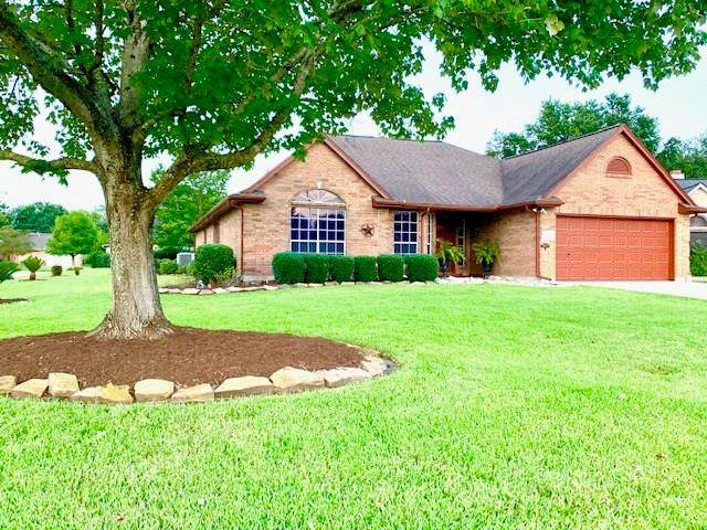 3318 Flower Field Lane, Pearland, TX 77584 (MLS #26677265) :: The Heyl Group at Keller Williams