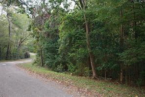 477 A Royal Creek, Conroe, TX 77303 (MLS #26708231) :: The Jill Smith Team