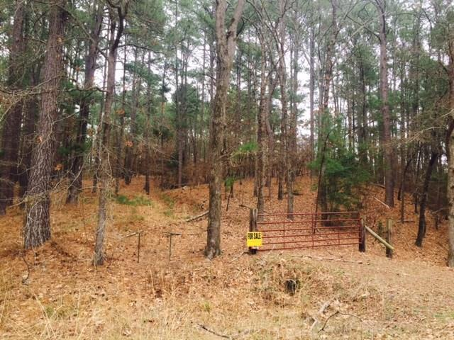 NA Venture View And Fm 315, Palestine, TX 75802 (MLS #27259678) :: Krueger Real Estate
