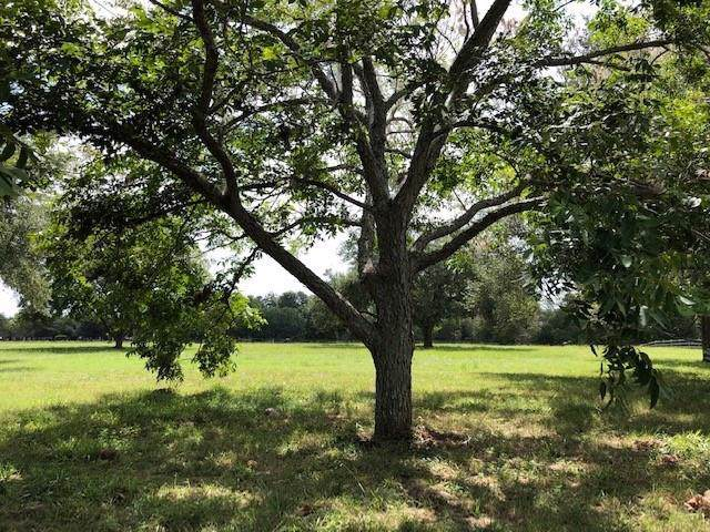 31618 Churchill Field, Fulshear, TX 77441 (MLS #27297971) :: The Parodi Team at Realty Associates