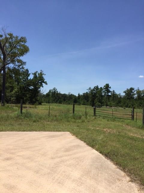 381 Big Buck Drive, Cleveland, TX 77328 (MLS #27371164) :: Texas Home Shop Realty