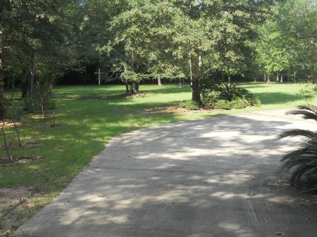 917 Spokane River Road, Montgomery, TX 77316 (MLS #27553257) :: Christy Buck Team
