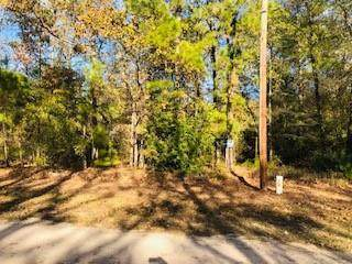 TBD W Village Cove Loop, Livingston, TX 77351 (MLS #2821650) :: My BCS Home Real Estate Group