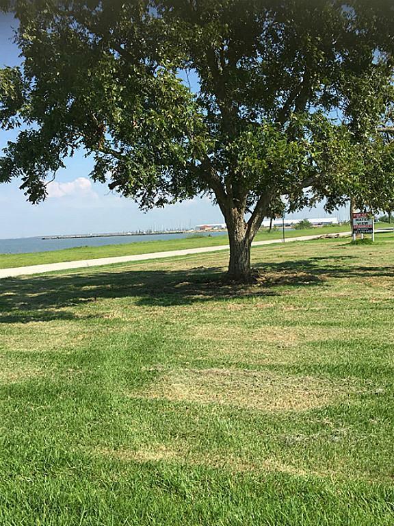 3502 Miramar Drive, Shoreacres, TX 77571 (MLS #28826383) :: The Heyl Group at Keller Williams