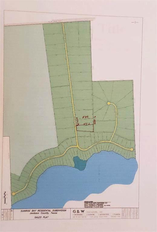 Lot 25 Block 1 Sunrise Bay Drive, Port Lavaca, TX 77979 (MLS #28992734) :: The Jill Smith Team