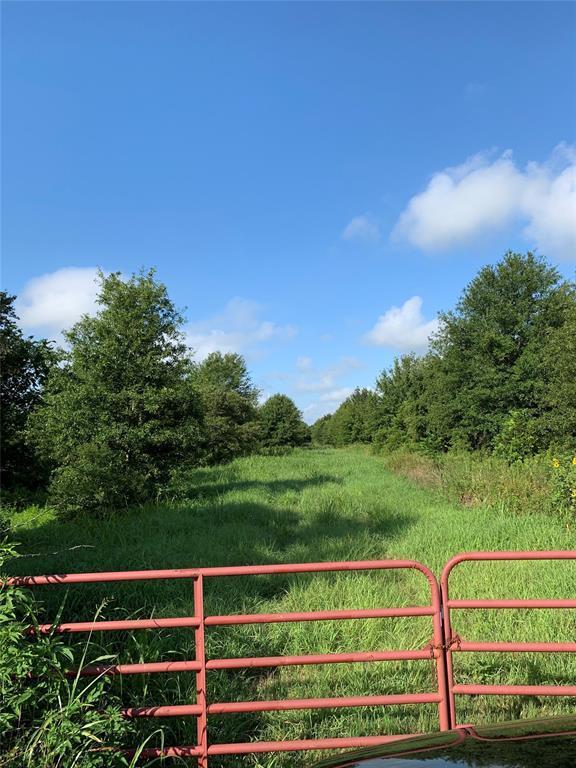 00 Brumbelow Road, Needville, TX 77461 (MLS #29412810) :: Giorgi Real Estate Group