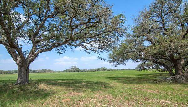 0 County Road 400, Yoakum, TX 77995 (MLS #29575128) :: My BCS Home Real Estate Group